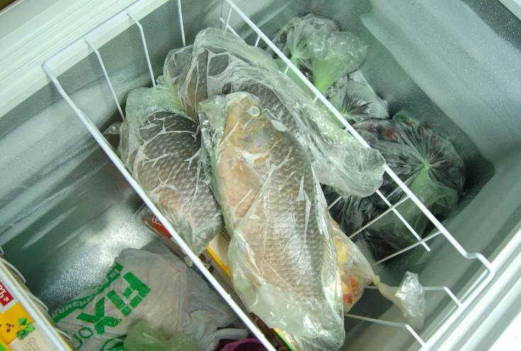Моя бабашка показала, как быстро почистить рыбу без грязи и чешуи. Чищу рыбу теперь только так
